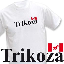 vlajeŠka (trička s potiskem - tričko volný střih) - zvětšit obrázek